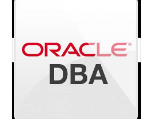 Oracle DBA Job Description and Salary Information - IT Career ...